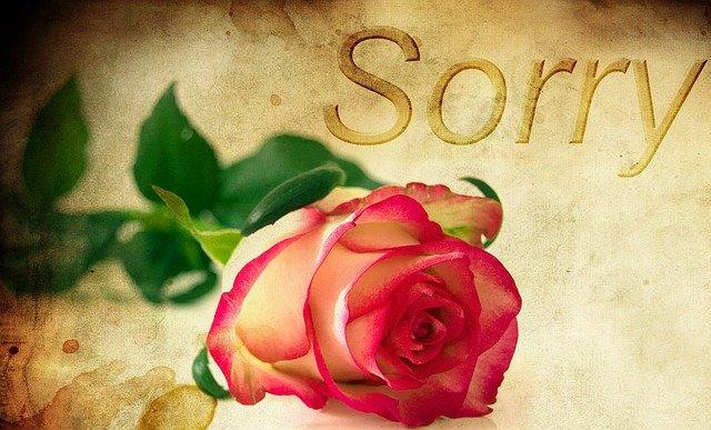 sorry image